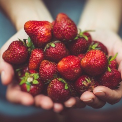 unsplash_strawberries